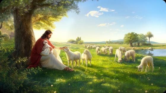 神的愛——主耶穌與小羊在一起溫馨的畫面