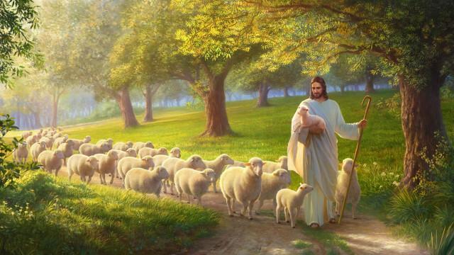 小羊緊跟主耶穌
